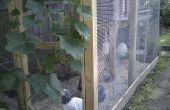 Chicken coop/cage/run