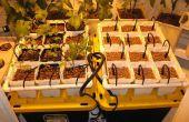 Hydroponique goutte à goutte jardin des légumes, des herbes ou des fleurs