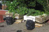 Best damn système hydroponique biologique recyclé pompe solaire