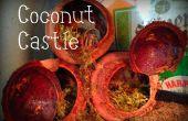 Comment faire pour gâter vos bernards l'ermite : Château de noix de coco