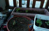 Comment construire un jardin Piou
