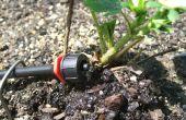 Irrigation goutte à goutte ! sauver le monde de l'économie de l'eau !