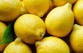 10 utilisations uniques pour les citrons !