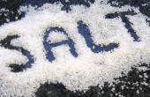 Décrypter l'Art de l'ajout de sel