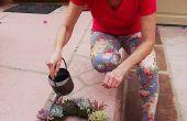 Comment garder votre bien vivante & à la recherche de guirlande succulente