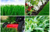 Comment entretenir votre jardin comme un professionnel