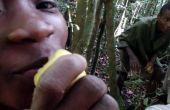 Remède Jungle malgache : Citron polyvalent