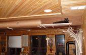 Labyrinthe géant Cat