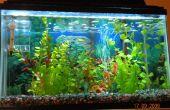Eclairage Aquarium LED