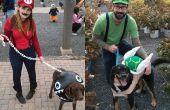 Costumes sur le thème de Mario pour les chiens et les gens