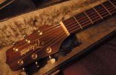 Maison humidificateur guitare