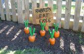 Les carottes de jardin en bois