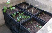 Crate « Air-Pot » jardinage urbain de récipient de lait