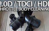 Nettoyer le corps de papillon dans 2.0 moteur diesel (Volvo, Ford, Peugeot, Citroen)