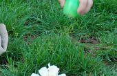 Comment faire des oeufs de Pâques « Floraison »