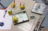 Batterie de citron