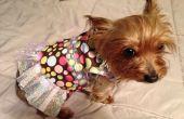 Maison chien robe / chemise pour les débutants