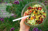 3 salades d'été végétarien (GF) (20g de protéines)