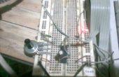 Convertisseur numérique analogique/simple & Cheap