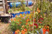 Bacs de réservoir facilitent le jardinage