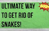Comment éloigner les serpents votre maison