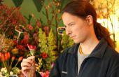 Guide de guy désemparés à acheter des fleurs