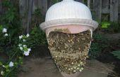 Sauver les abeilles de l'extinction ! Vous pouvez le faire.