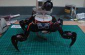 En gras le Robot quadrupède avec cadre acrylique O