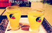 Maison de mangue courge - sans arôme artificiel