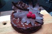 Torte au chocolat Oblivion avec chocolat Bay et le chou laisse