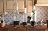 Plantes en bouteilles