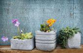 Comment faire pour les Pots de fleurs de béton à la main personnalisé