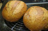100 % blé entier croustillante non pétrir le pain artisanal