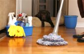 Services de nettoyage de la maison