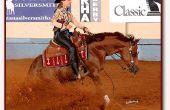 Comment dresser votre cheval à faire un Stop de Reining