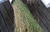Tuyaux en PVC pour le rouissage plantes de lin