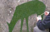 Comment faire des graffitis de mousse