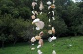 Coquillage Windchime