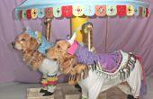 Phoenix et Gryphon les chevaux du carrousel