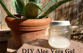 Gel d'Aloe Vera DIY