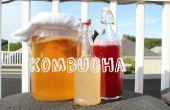 Double fermenté Kombucha