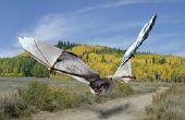 Géant de chauves-souris - comment intégrer deux Photos à l'aide de Pixlr