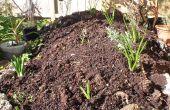 Comment faire un jardin de fleurs surélevé d'une pile de vieux béton & roches