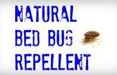 Punaise de lit répulsif naturel