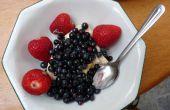 Faire un Wild Berry Fruit Harvester / sélecteur de bouteilles vides d'eau de Javel
