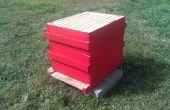 10 vues de la ruche Langstroth