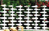 Ajouter belle couleur à votre jardin avec de superbes escrime