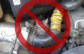 Se débarrasser d'un chat embêtant du compartiment moteur de votre voiture