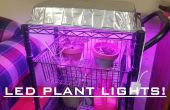 LED Grow lumière pour les plantes d'intérieur pour 30 $! Facile !
