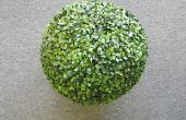 Comment ancrer une boule de buis artificiel pour une jardinière en osier